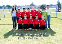 U10B - Holl2 - Red Cobras